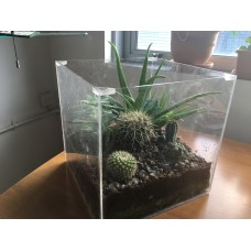 Clear Acrylic Plant Box